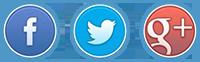 Come condividere un URL su Facebook, Twitter e Google + - Immagine 1 - Professor-falken.com