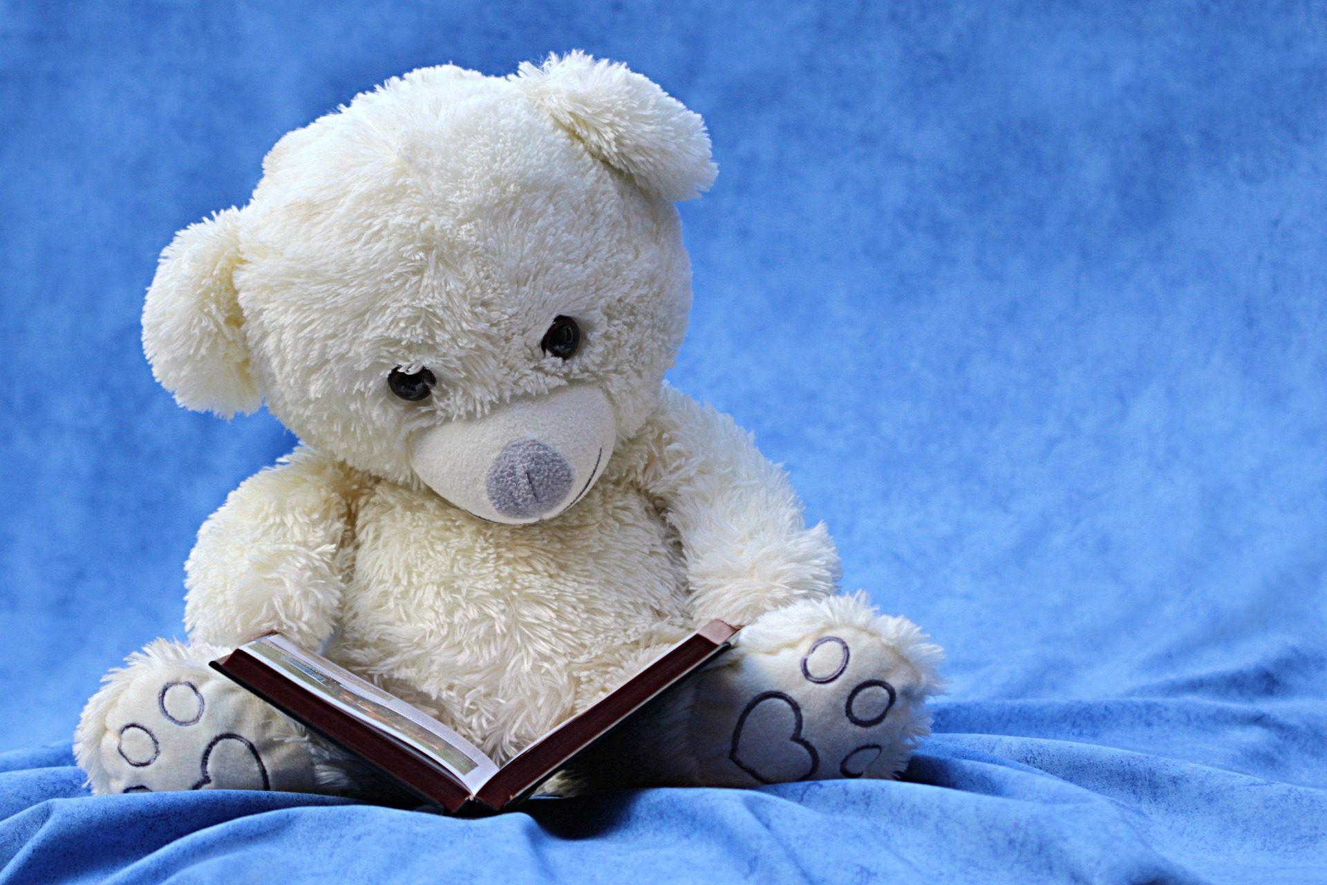 熊, 泰迪, 书, 阅读, 白色 - 高清壁纸 - 教授-falken.com