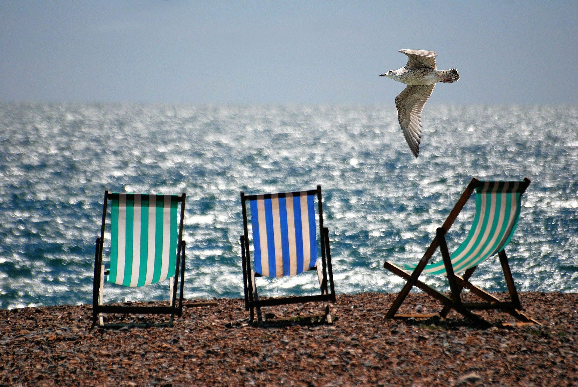 椅子, 海滩, 海鸥, 石头, 海 - 高清壁纸 - 教授-falken.com