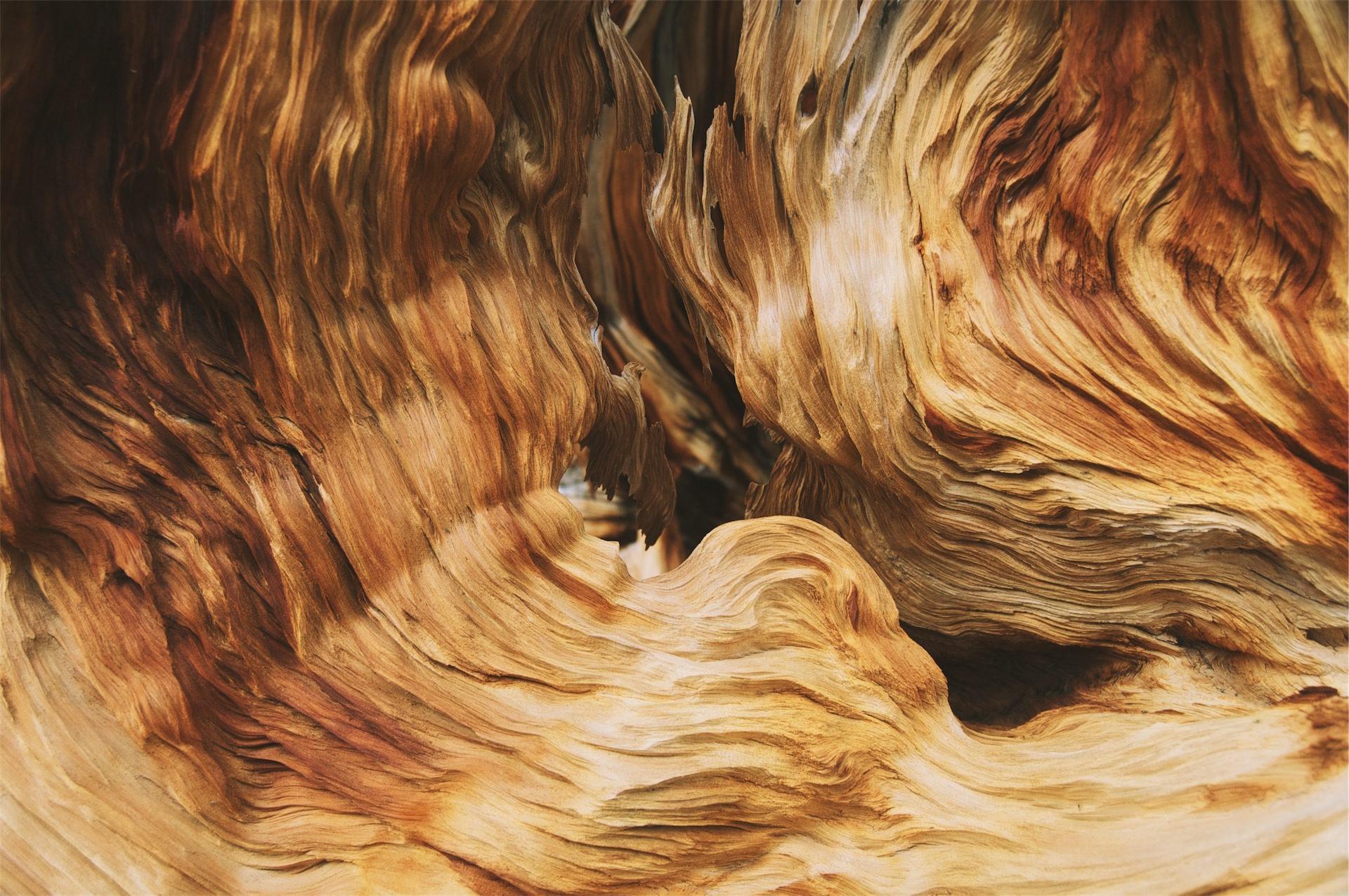 вен, Вуд, волны, красочные, градиент - Обои HD - Профессор falken.com