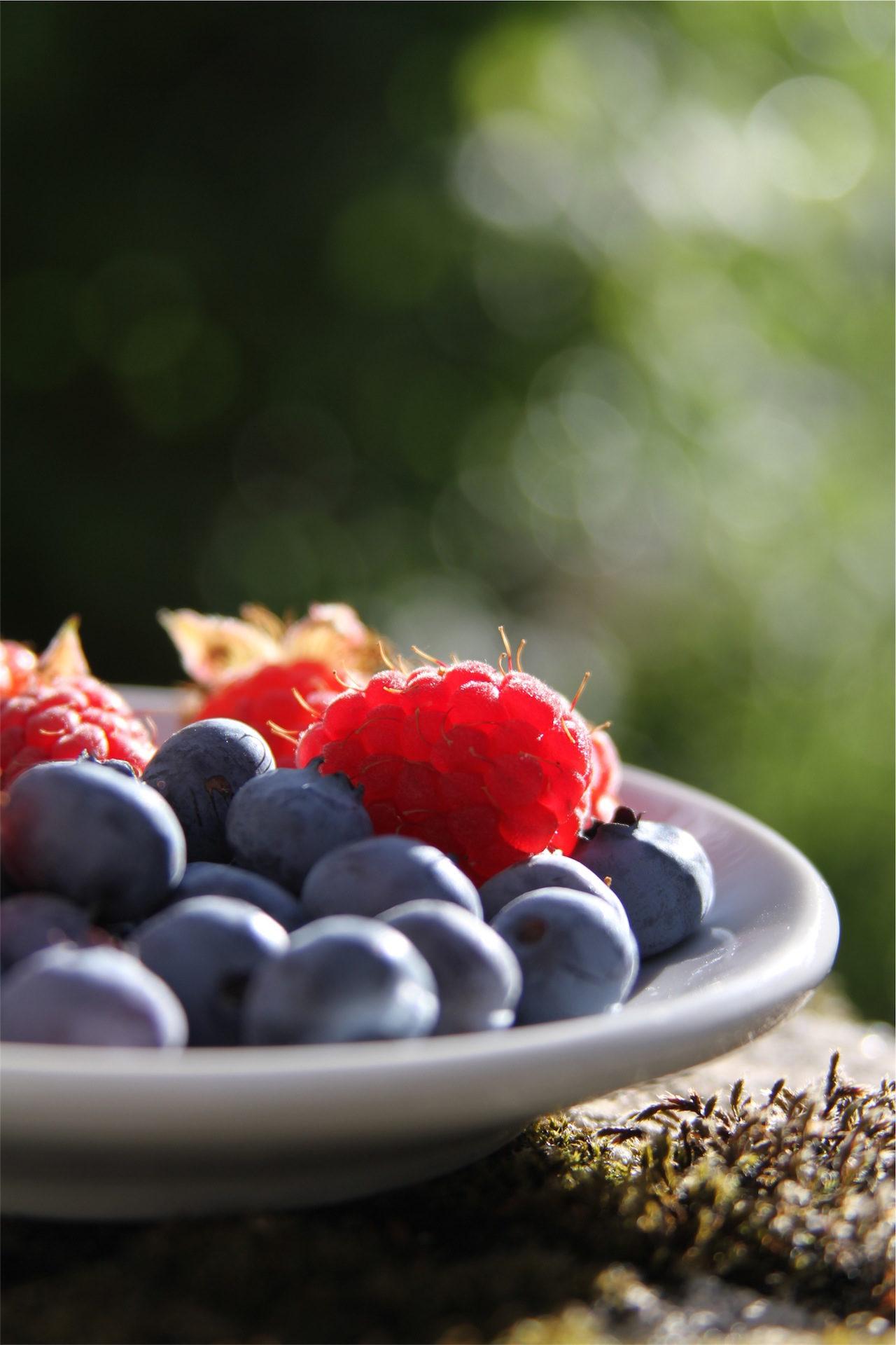 frutta, mirtilli, More, Rosso, piatto - Sfondi HD - Professor-falken.com