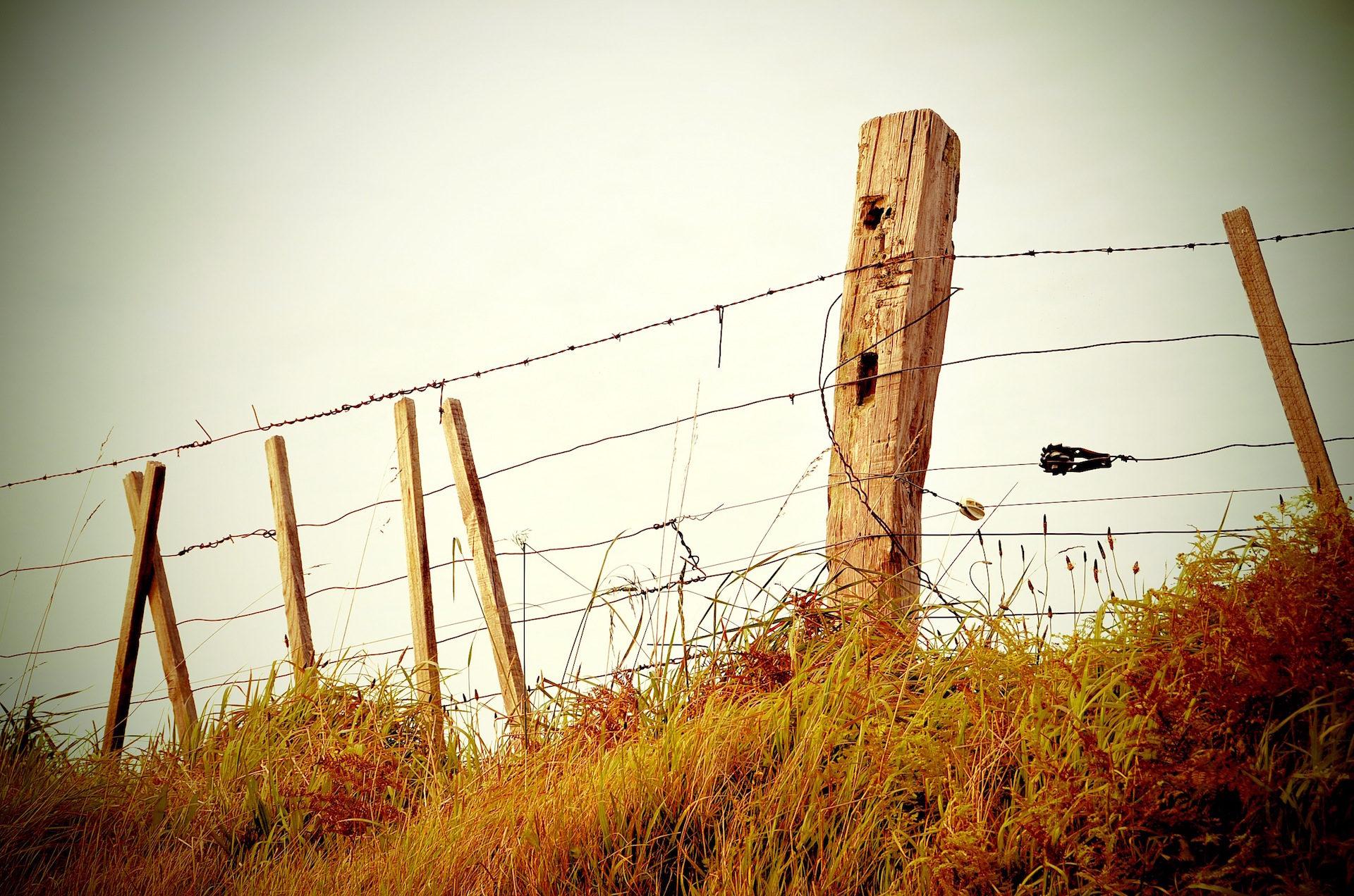 栅栏, 关闭, alambre, 破碎, 老 - 高清壁纸 - 教授-falken.com