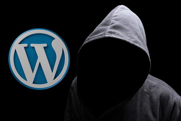 कैसे अपने WordPress प्रशासन पैनल में छिपा विकल्प का उपयोग करने के लिए - प्रोफेसर-falken.com
