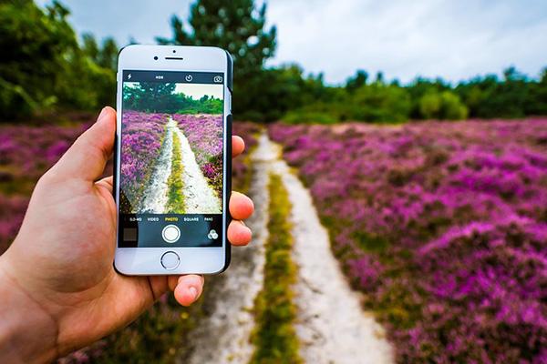 6 Conseils pour une meilleures photos de qualité avec votre iPhone - Professor-falken.com